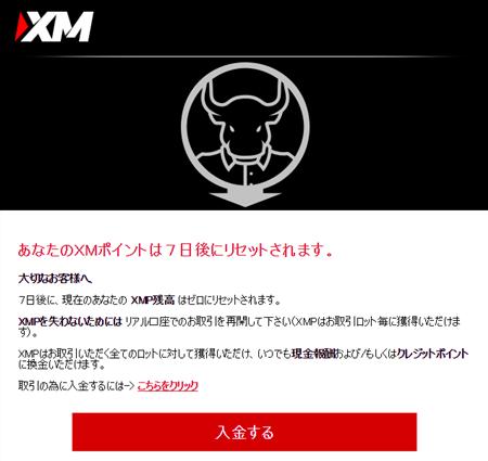 XMP有効期限